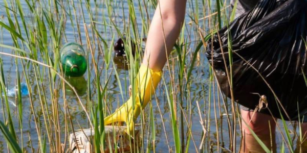 Anacostia River Clean Up Shortlist