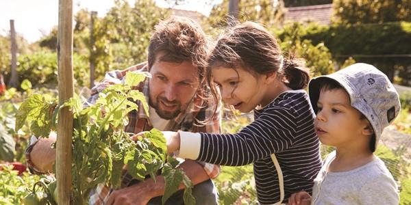Beans Basil Bees Kids Gardening