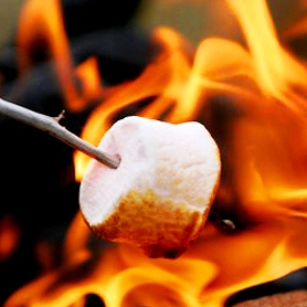 roasting-marshmallow (c)Kaplan International